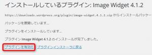 Image Widget02